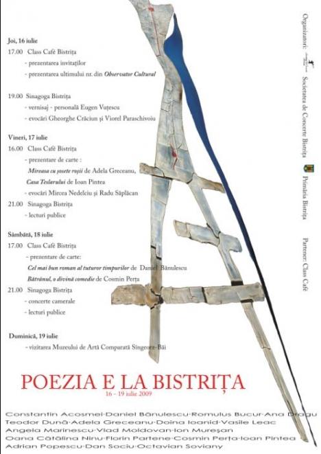 2009-afis-bistrita